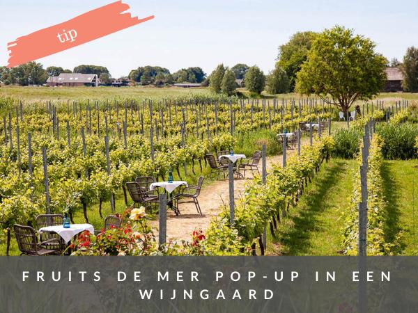 Pop-up wijngaard Amstelveen